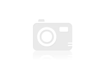 סיור בצ'לסי + היי ליין Chelsea & Highline