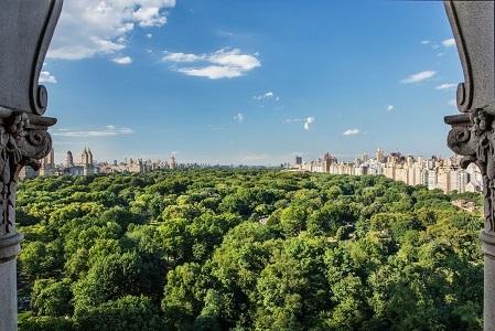 Ritz Carlton Central Park