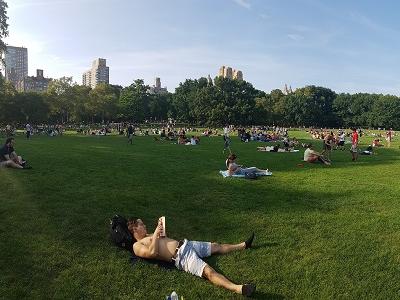 סיור סנטרל פארק בעברית